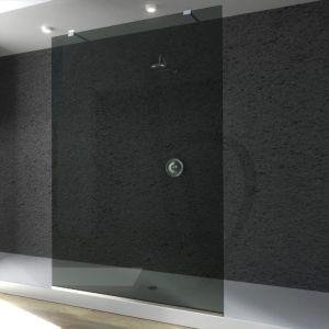 douche en verre fixe